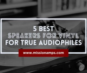 Best Speakers for Vinyl